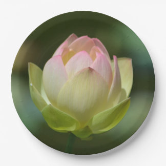 Dreamy Lotus Blossom Paper Plate