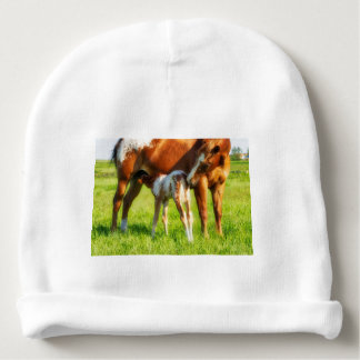 Dreamy, new horse foal with Mama Baby Beanie