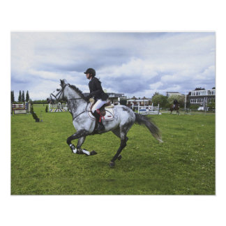 Dressage Horse And Rider Poster