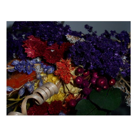Dried Autumn Flowers Postcard