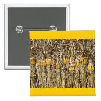 Dried Corn Stalk Decorations 15 Cm Square Badge