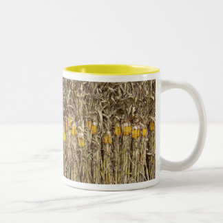 Dried Corn Stalk Decorations Two-Tone Coffee Mug