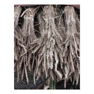 Dried Plants for Decorating Custom Flyer