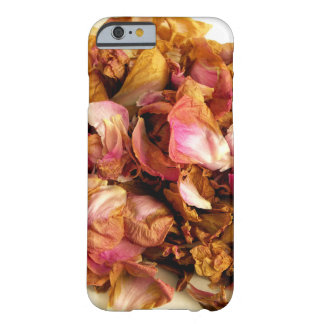 Dried Roses iPhone 6/6s Case