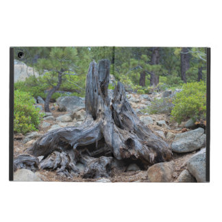 Dried Tree Trunk In The Forest Case For iPad Air