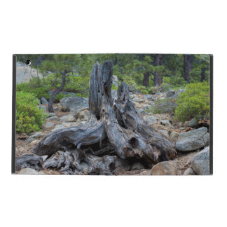 Dried Tree Trunk In The Forest iPad Case