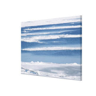 Drift Ice 5 Canvas Print