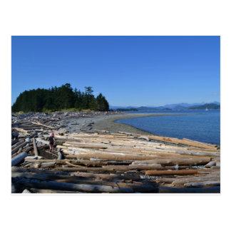 Driftwood at Rebecca Spit, Quadra Island, BC Postcard