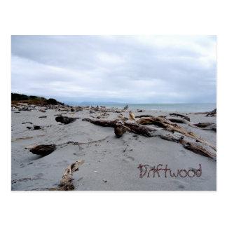 Driftwood Postcard