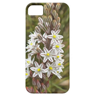 Drimia Maritima iPhone 5 Covers
