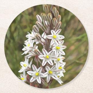 Drimia Maritima Round Paper Coaster