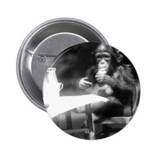 Drinking Chimpanzee Vintage National Zoo 6 Cm Round Badge