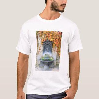 Drinking fountain in fall, Hungary T-Shirt