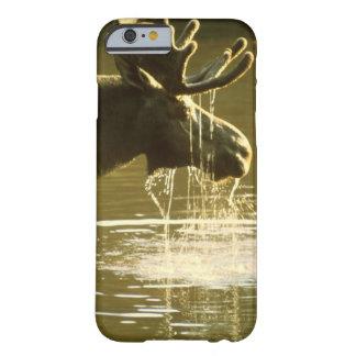 Drinking Moose - iPhone 6 case