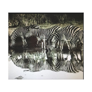 Drinking Zebra Canvas Print