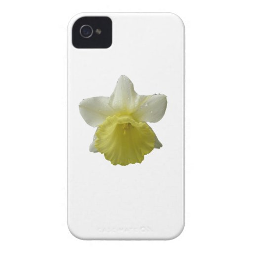 Dripping Daffodil Blackberry Bold Case