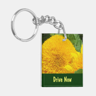 Drive Now Text Later keychains Driving Safely Safe