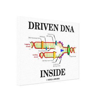Driven DNA Inside DNA Replication Genetics Humor Canvas Print