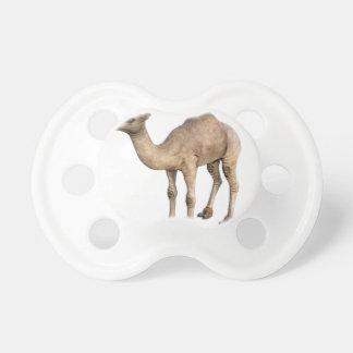 Dromedary Camel Dummy