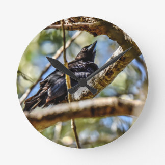 DRONGO RURAL QUEENSLAND AUSTRALIA ART EFFECTS ROUND CLOCK