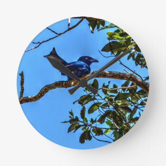 DRONGO RURAL  QUEENSLAND AUSTRALIA ART EFFECTS WALLCLOCKS