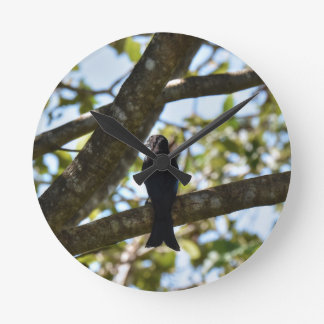 DRONGO RURAL QUEENSLAND AUSTRALIA WALL CLOCK
