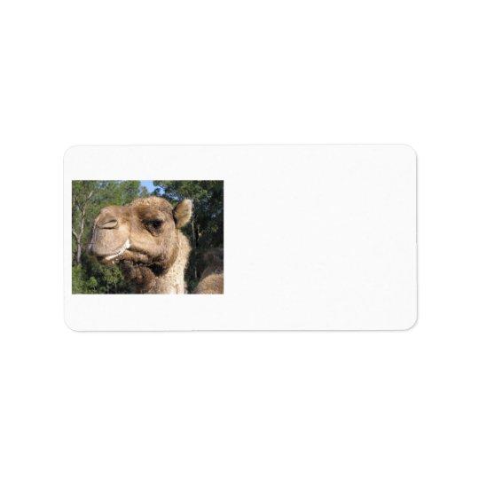 Drooling Camel Label Address Label