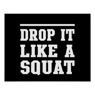 Drop it Like a Squat Poster