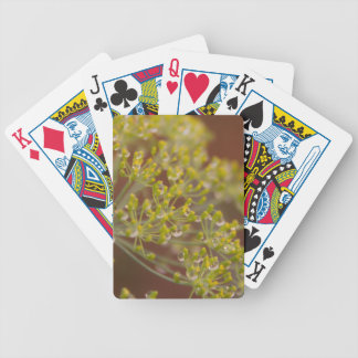 Droplets on dill seed flower poker deck