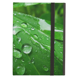 Droplets on Green Plant iPad Air Case