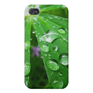 Droplets on Green Plant iPhone 4 Cases