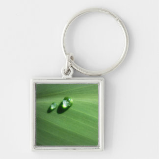 droplets Silver-Colored square key ring
