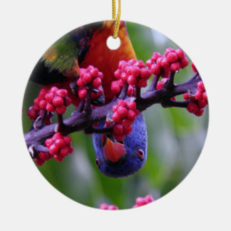 Dropping in for a snack - Rainbow Lorikeet Ceramic Ornament