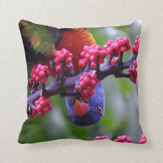 Dropping in for a snack - Rainbow Lorikeet Cushion