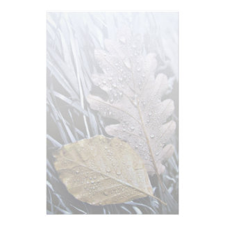 Drops on Autumn Leaves - Stationery Letterhead