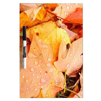 Drops on Leaves Dry Erase Board