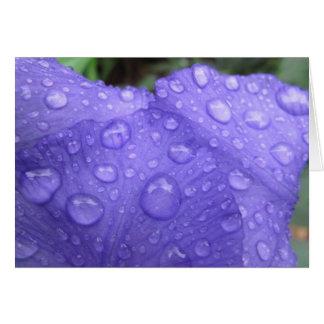 Drops on Purple Iris Note Card