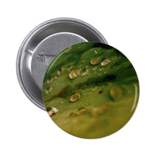 Drops Pinback Buttons
