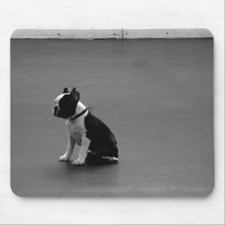 DRU puppy boston terrier Mouse Mats