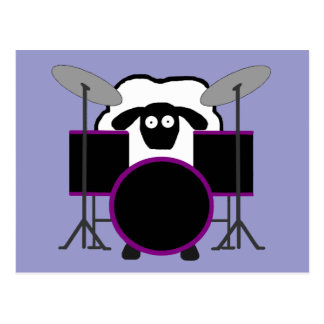 Drummer Sheep Postcard
