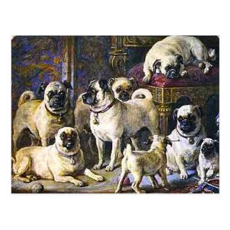 Drumpellier Pugs Postcard