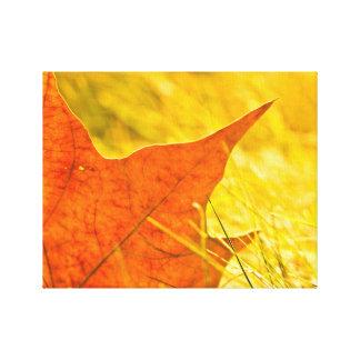 Dry autumn leaf canvas print