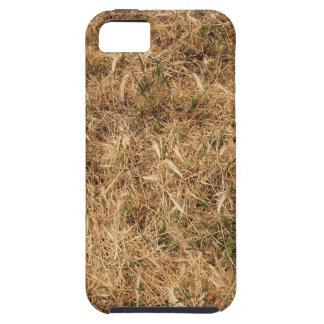 Dry grass in a meadow iPhone 5 cases