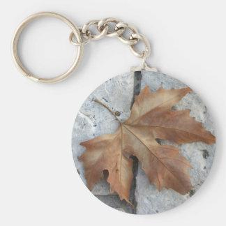 Dry maple leaf key ring