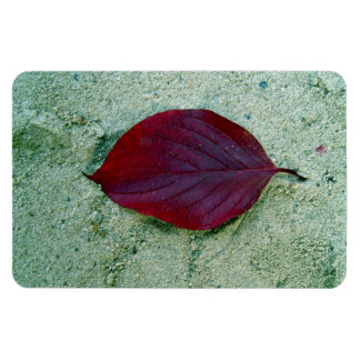 Dry Red autumn leaf laying on sand Flexible Magnets