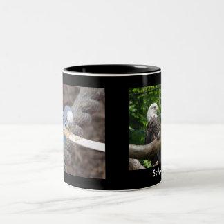 DSC04582, DSC04495, Sally's Mug