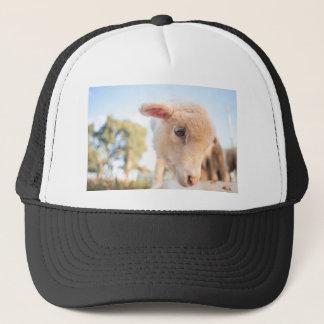 _DSC2491 TRUCKER HAT