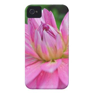 DSC_0113.000 iPhone 4 Case-Mate CASES