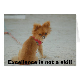 DSC_0152, Excellence is not a skill Card