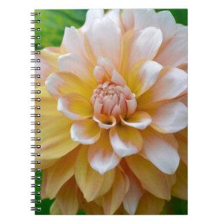 DSC_0574 (1) NOTEBOOKS